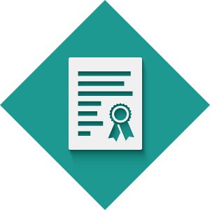 Testing & Certification Icon
